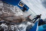 Learn how scientists from Osearch are geo-tagging Great White Sharks
