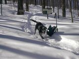 RIPTON, VT - Snowshoeing the Long Trail with Scout.